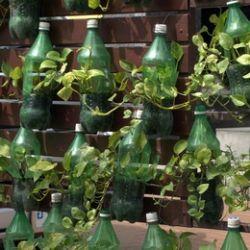 Come fare dei vasi con vecchie bottiglie di plastica for Vasi con bottiglie di plastica